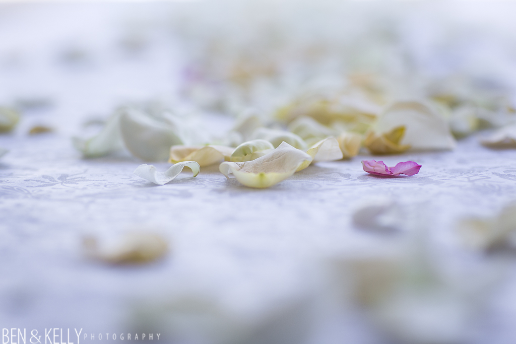 benandkellyphotography.lauraandjeff-10008