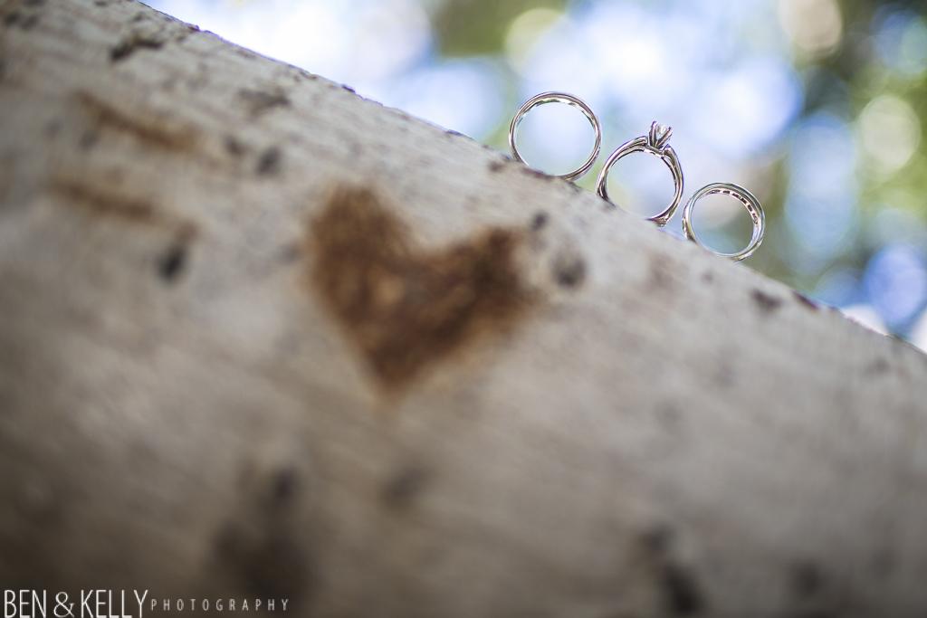 benandkellyphotography.laurenandblake-10002