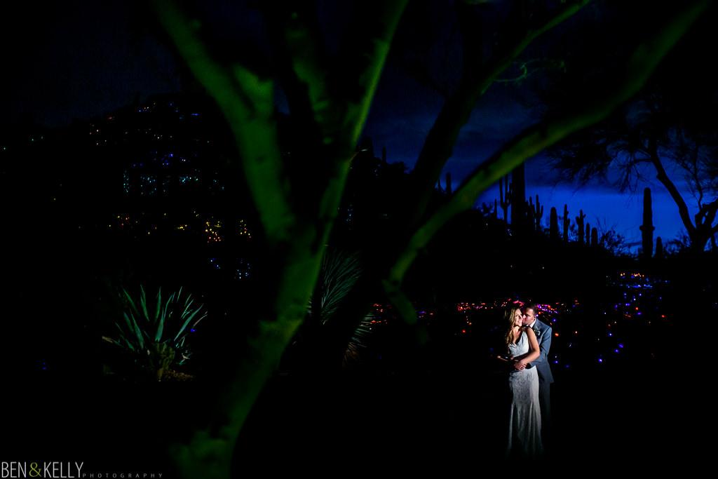 desert botanical gardens lights - Ben and Kelly Photography