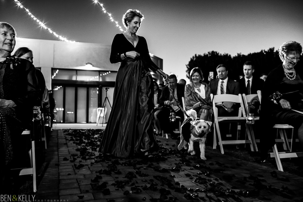 dog in wedding - scottsdale - ben and kelly photography